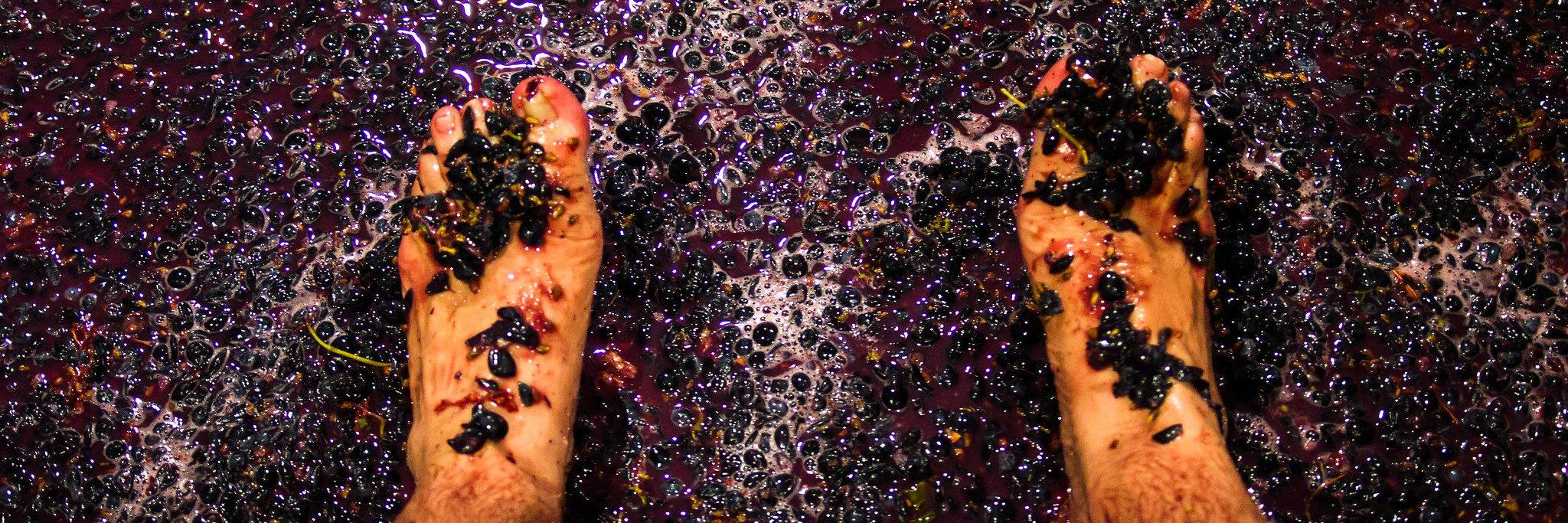 Foot Trodden